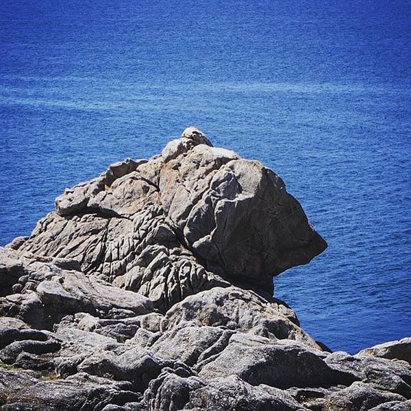 Le rocher de l'ours #ours #bear #rock